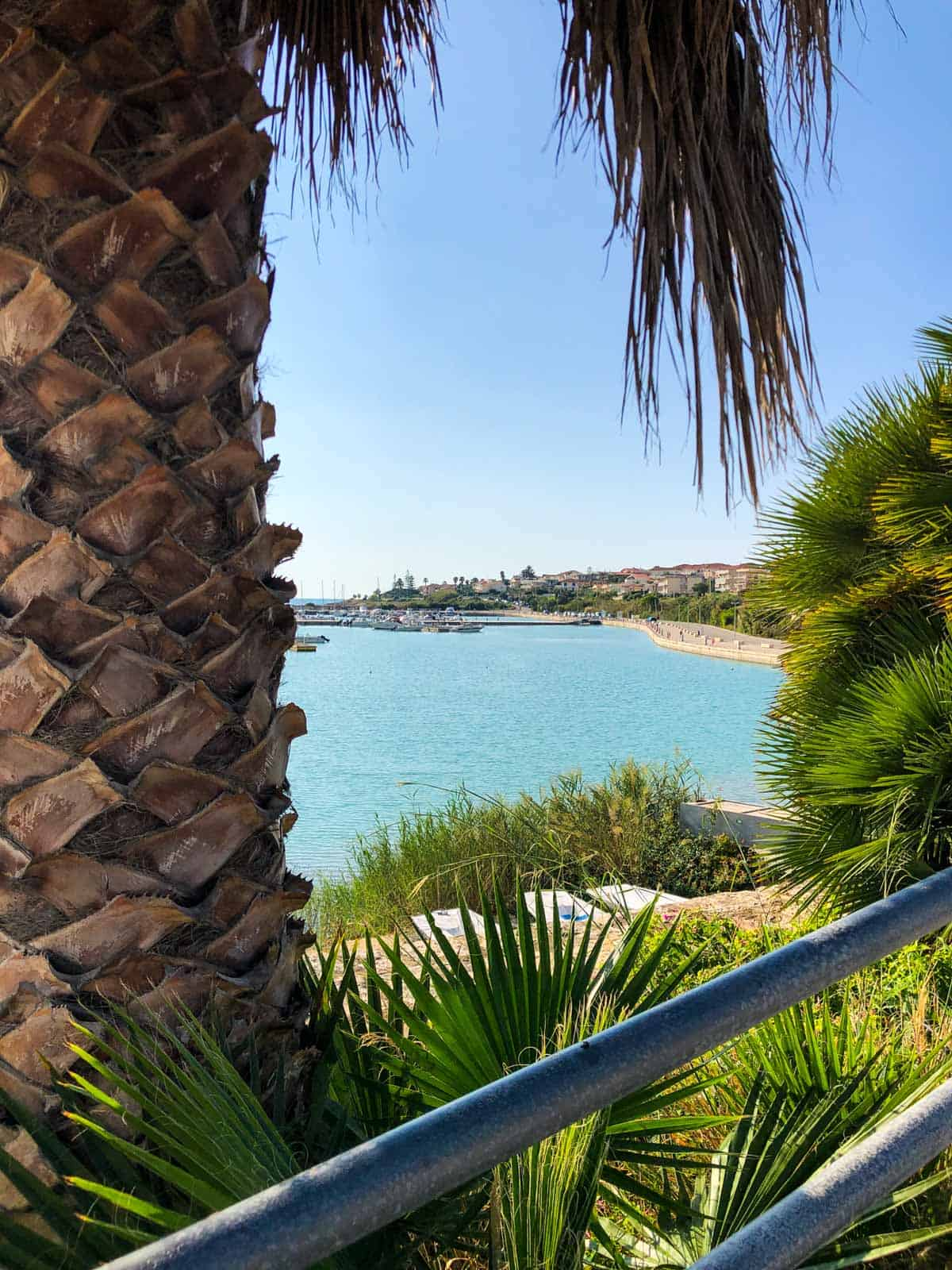 View of Ragusa Marina with a palm tree in the foreground
